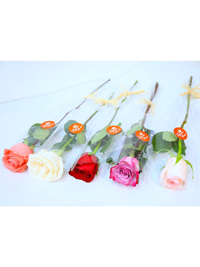 Rose Collection Sulfan Bouquets