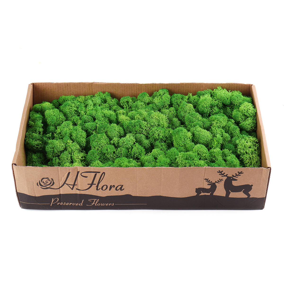 Reindeer Moss l.green 500g Garden Decoration