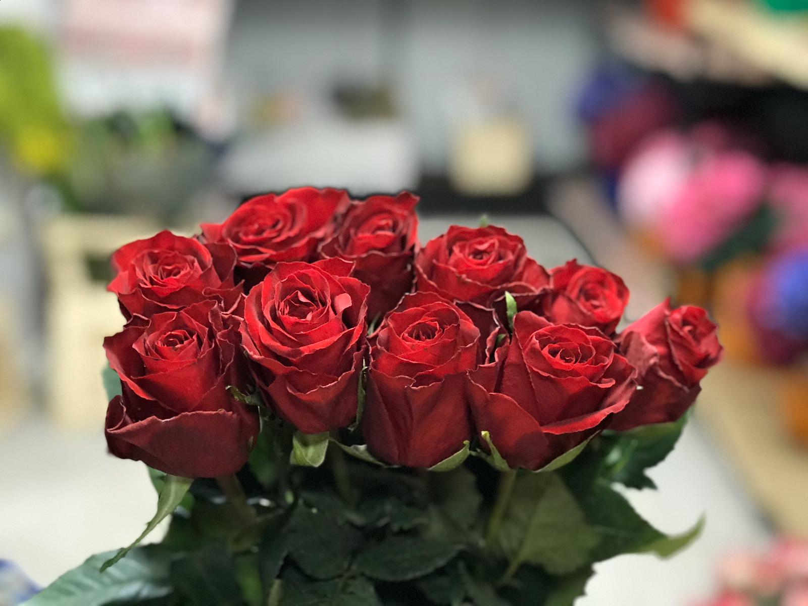 ورد - أحمر  الزهور بالجملة