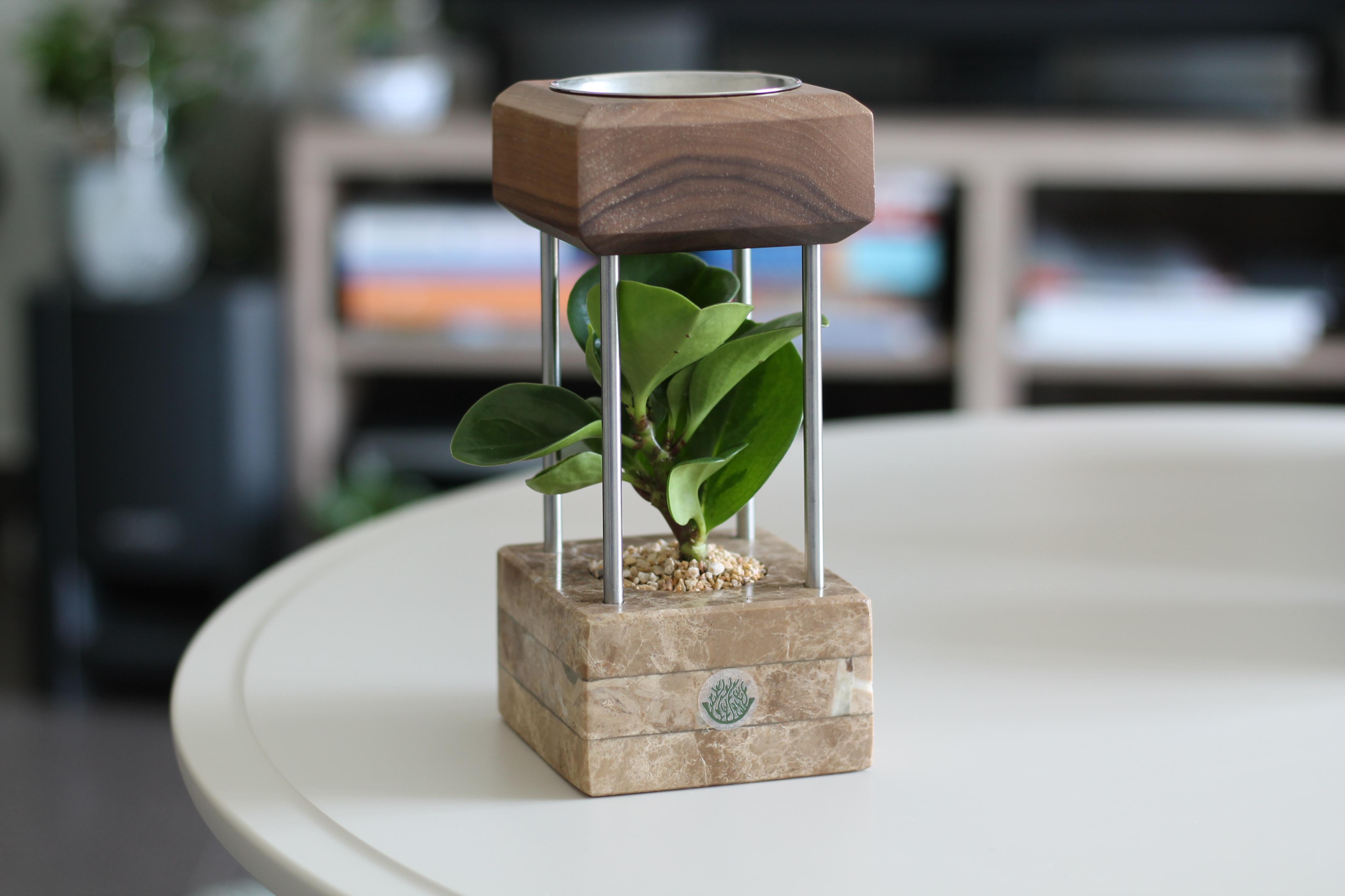 Beige Marble Mubkhar 'Office Plants'