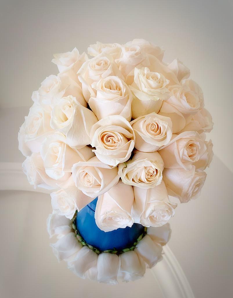 FlowerPot زهور مع قاعدة