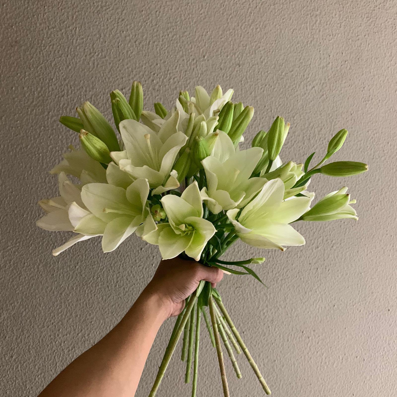 ليليومز وايت ريتشموند  الزهور بالجملة