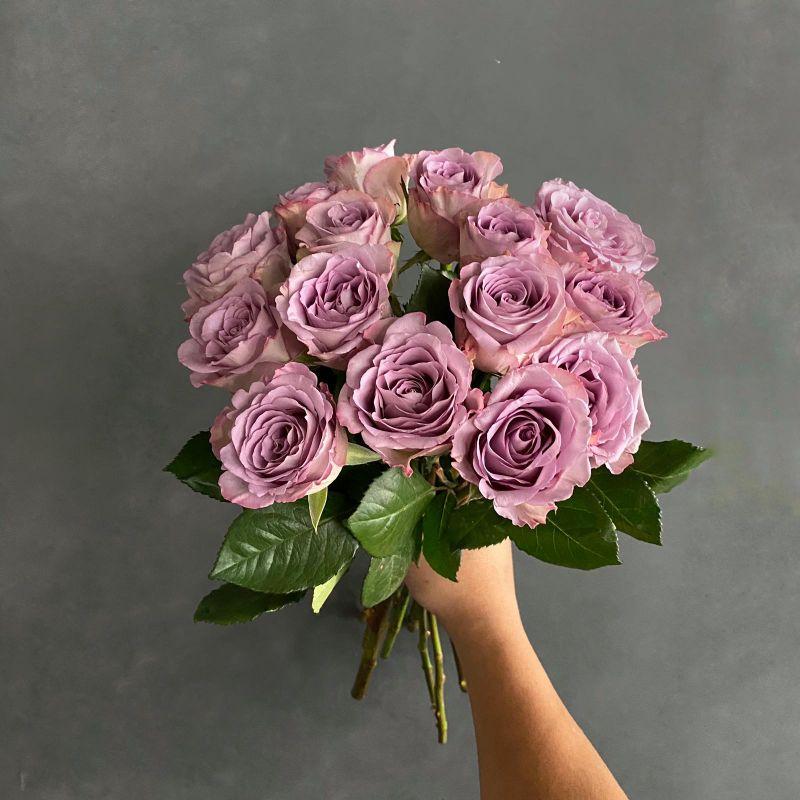 زهور بنفسجي ' الزهور بالجملة'