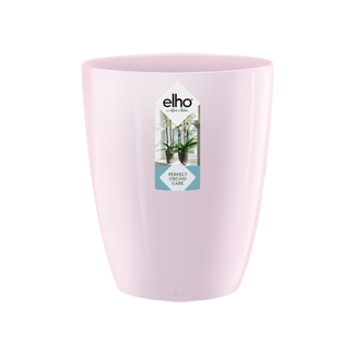 Brussels Diamond Orchid High Pink 12,5cm 'Pots & Vases'