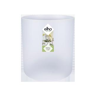 وعاء شفاف للنبات 'أواني و مزهريات'