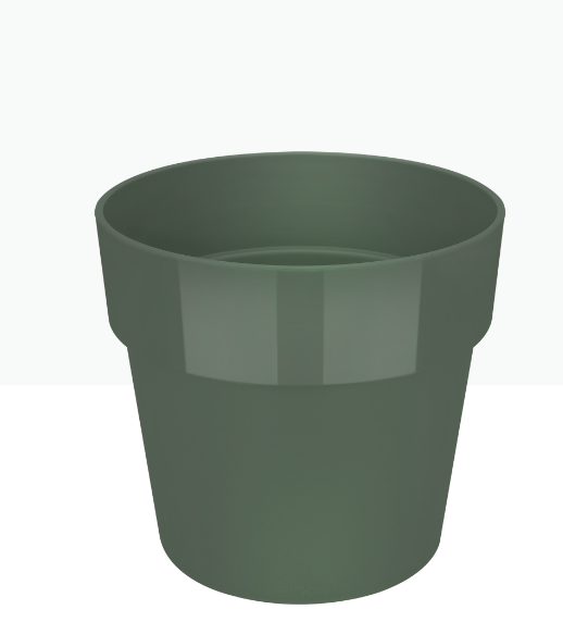 وعاء دائري - أخضر 'أواني و مزهريات'