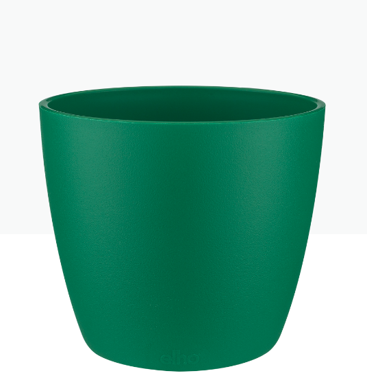 Brussels Round Mini Pot - Green 'Pots & Vases'