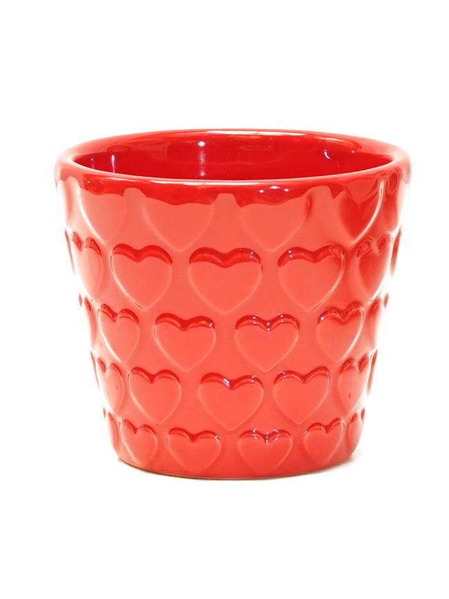 Mixed Cactus Pot 'Pots & Vases'