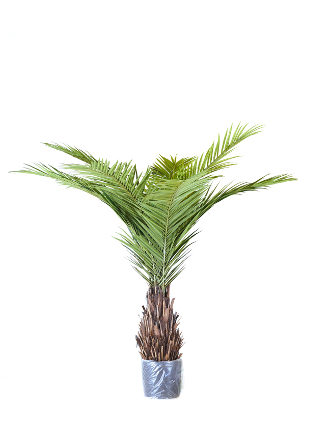 Phoenix Canari Palm Artificial Plants
