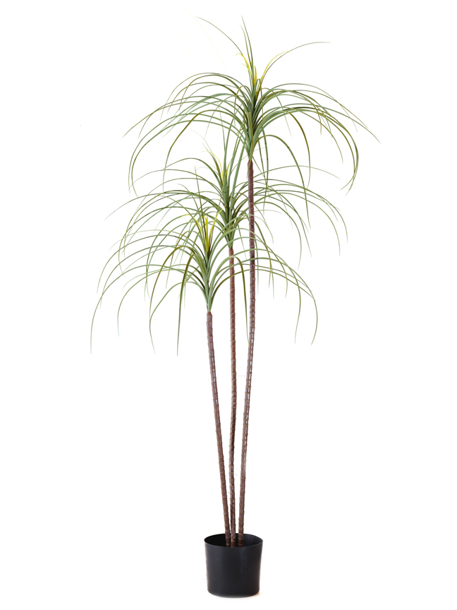 Ponytail Palm Artificial Plants