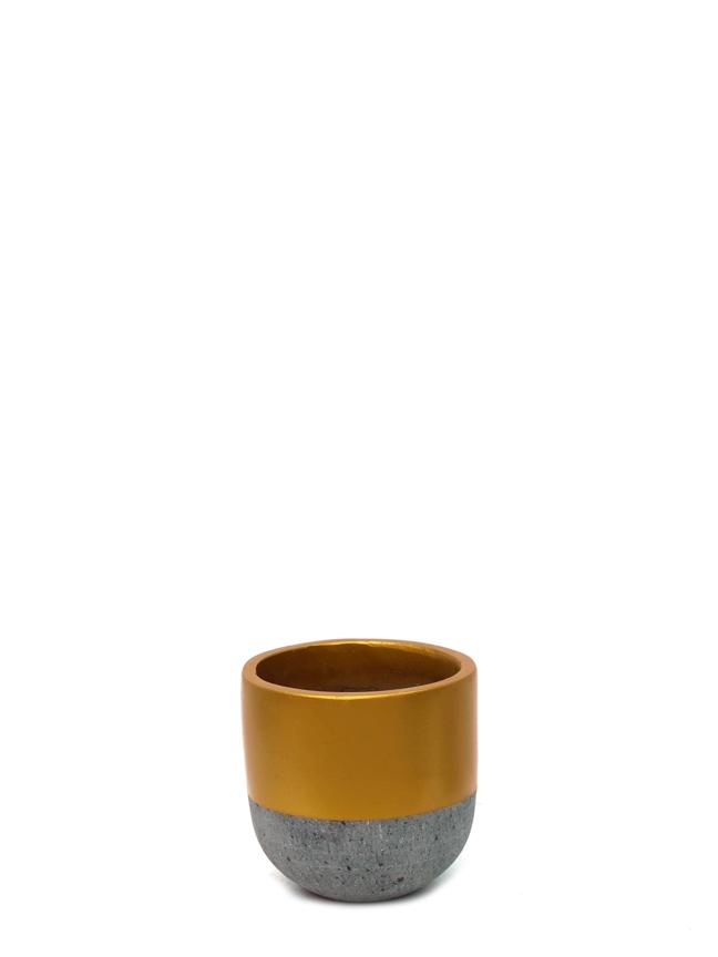 Top Pot Gold (20) 'Pots & Vases'