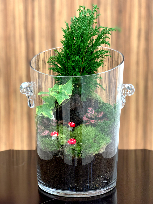 Hand Made Terrarium - Tall  (Limited Edition) Premium Collection