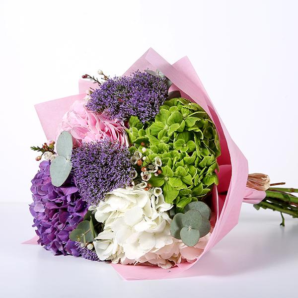 Colorful Hydrangea 'Bouquets'