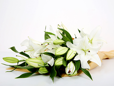 White Lilies 'Bouquets'