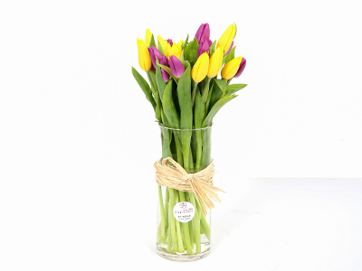 Tulips In A Vase 'Flower with Base'