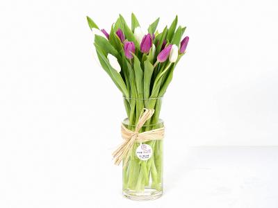 زهور التوليب في فازة 2 'زهور مع قاعدة'