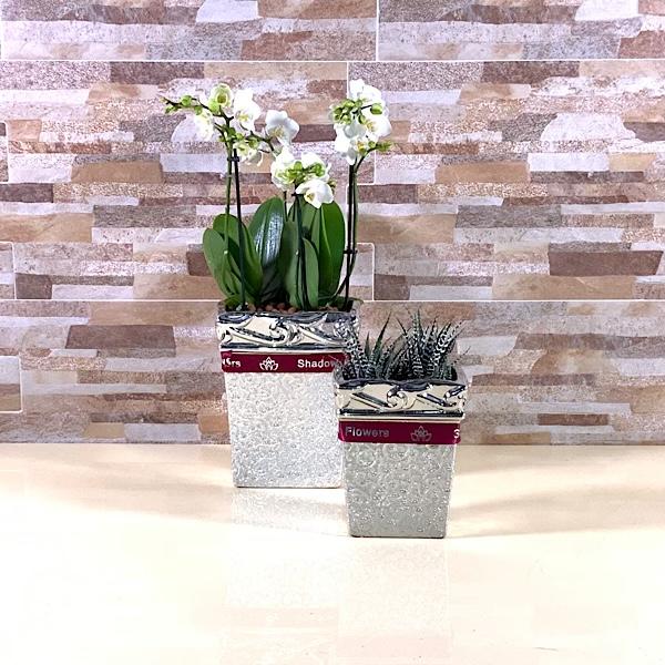 Duo Planter 'Premium Collection'