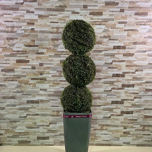 البقس ثلاثي الأشجار نباتات اصطناعية