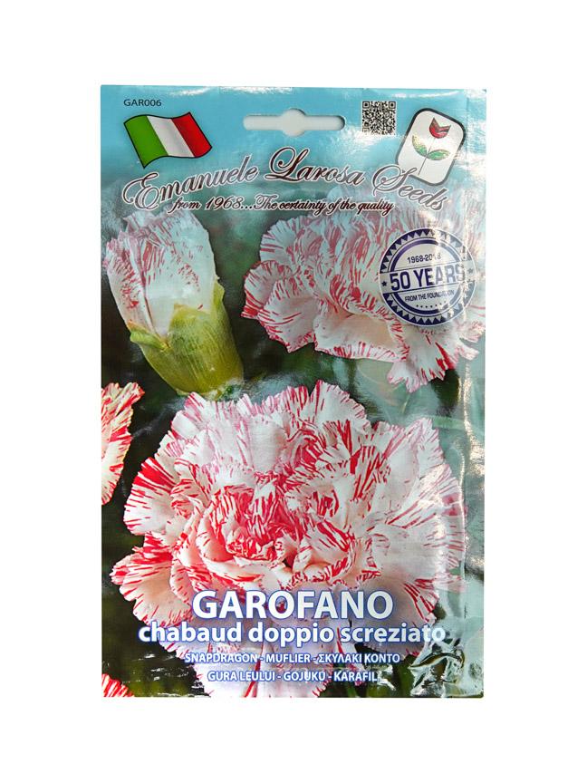 Garofano Seeds Seeds