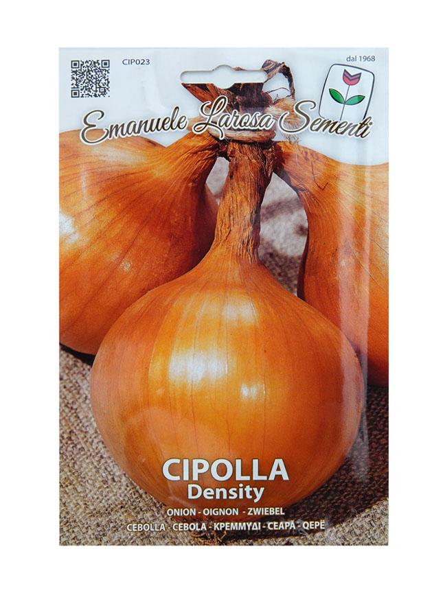 Onion 'Seeds'