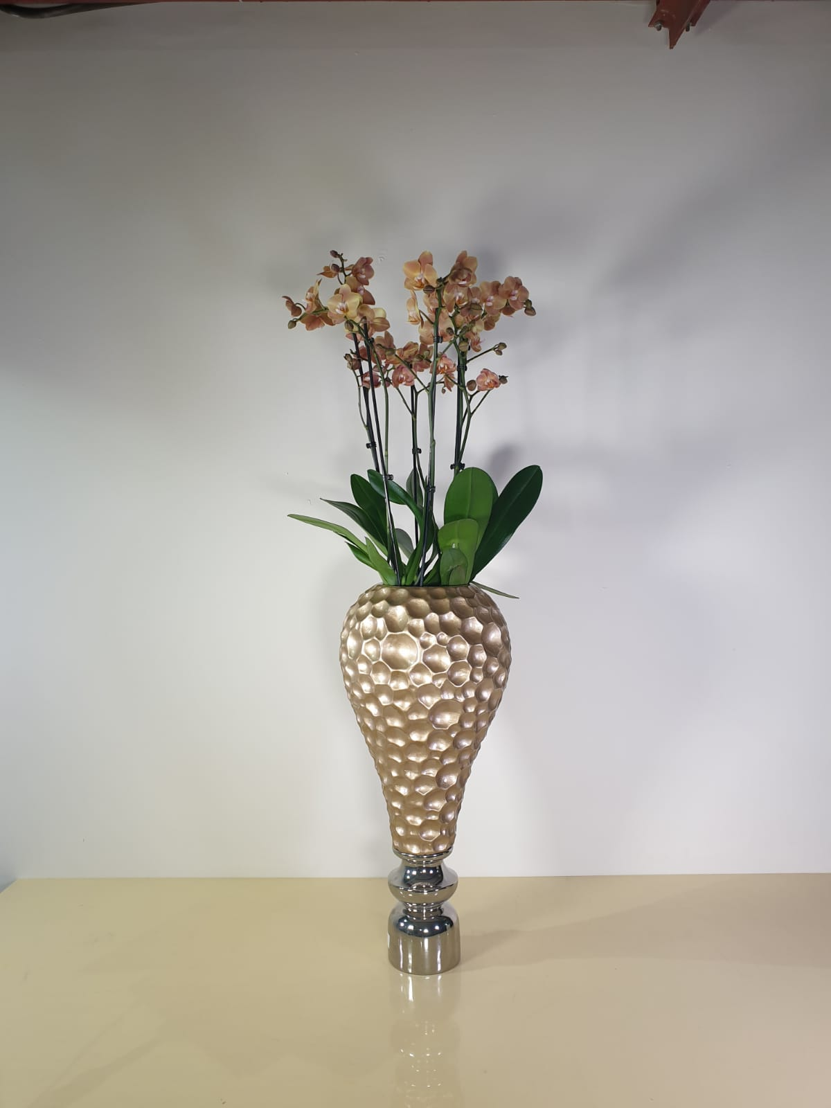 Orchid Flowers in a Vase - Peach Premium Collection