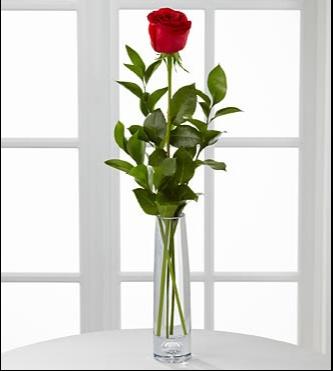 جوري في مزهرية زجاجية 'زهور مع قاعدة'