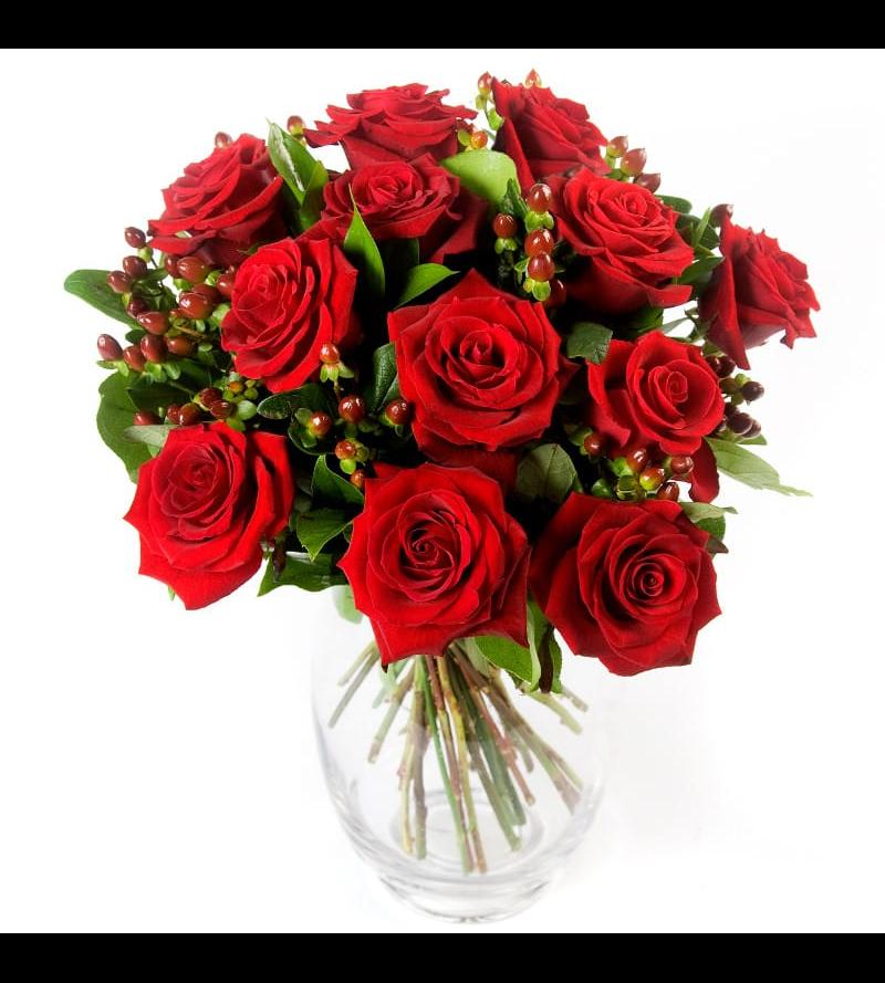 تنسيق جوري وهيبركوم - أحمر 'زهور مع قاعدة'