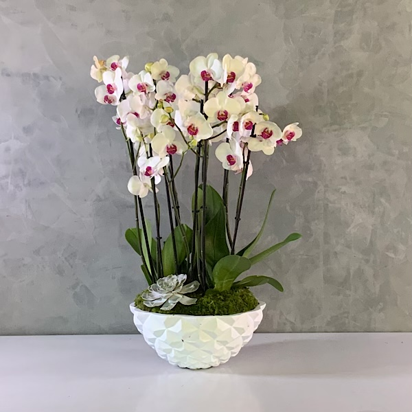 Red lips heraldy vase Premium Collection