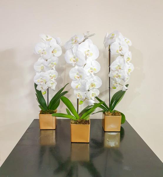 زهور الأوركيد الاصطناعية نباتات اصطناعية