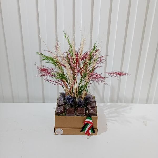 Colored feather box Hala February