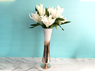 Casablanca in a vase Get Well Soon