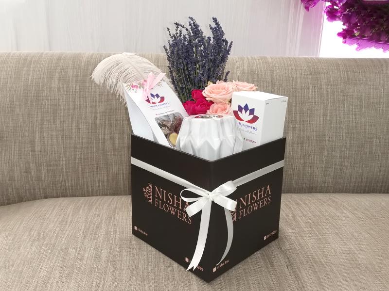 Nisha Combo Box Combo Pack