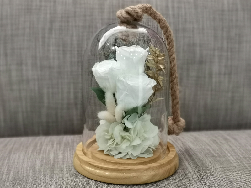 long lasting white roses Ramadan Collection