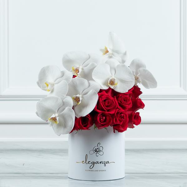 بلوم بوكس الخاص 1 زهور مع قاعدة