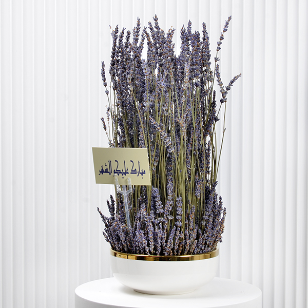 Lavender Beauty  Premium Collection