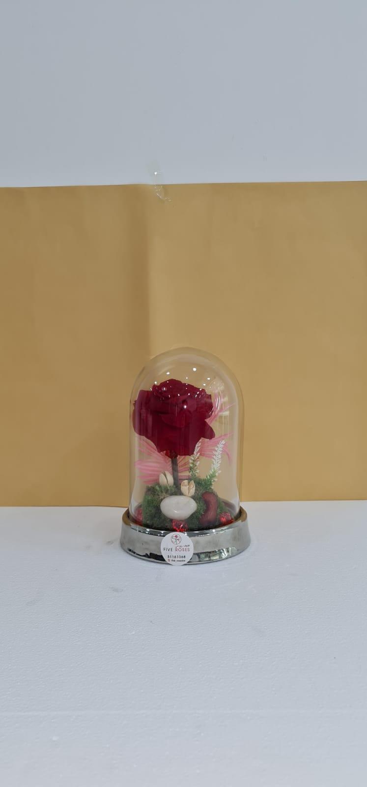 long life flower Red Love