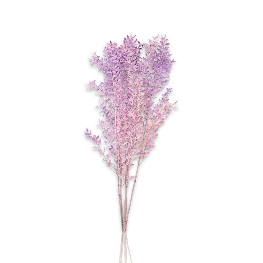 راسكس محفوظ - بنفسجي فاتح  الزهور بالجملة