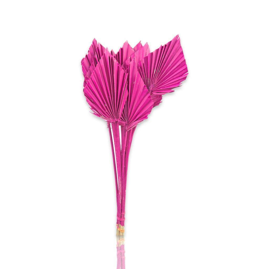 بالم  سبير - وردي غامق   الزهور بالجملة