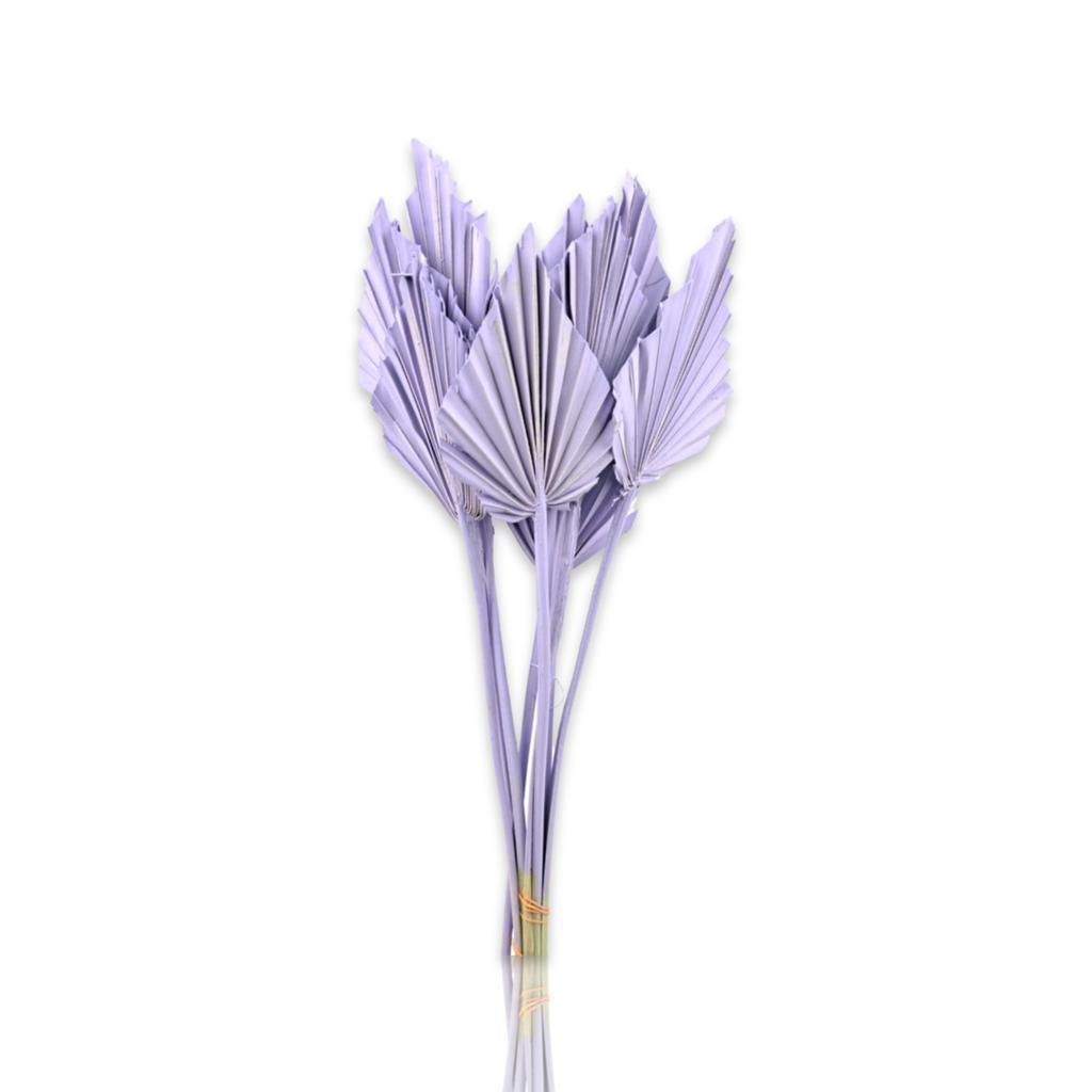 بالم سبير - بنفسجي   الزهور بالجملة