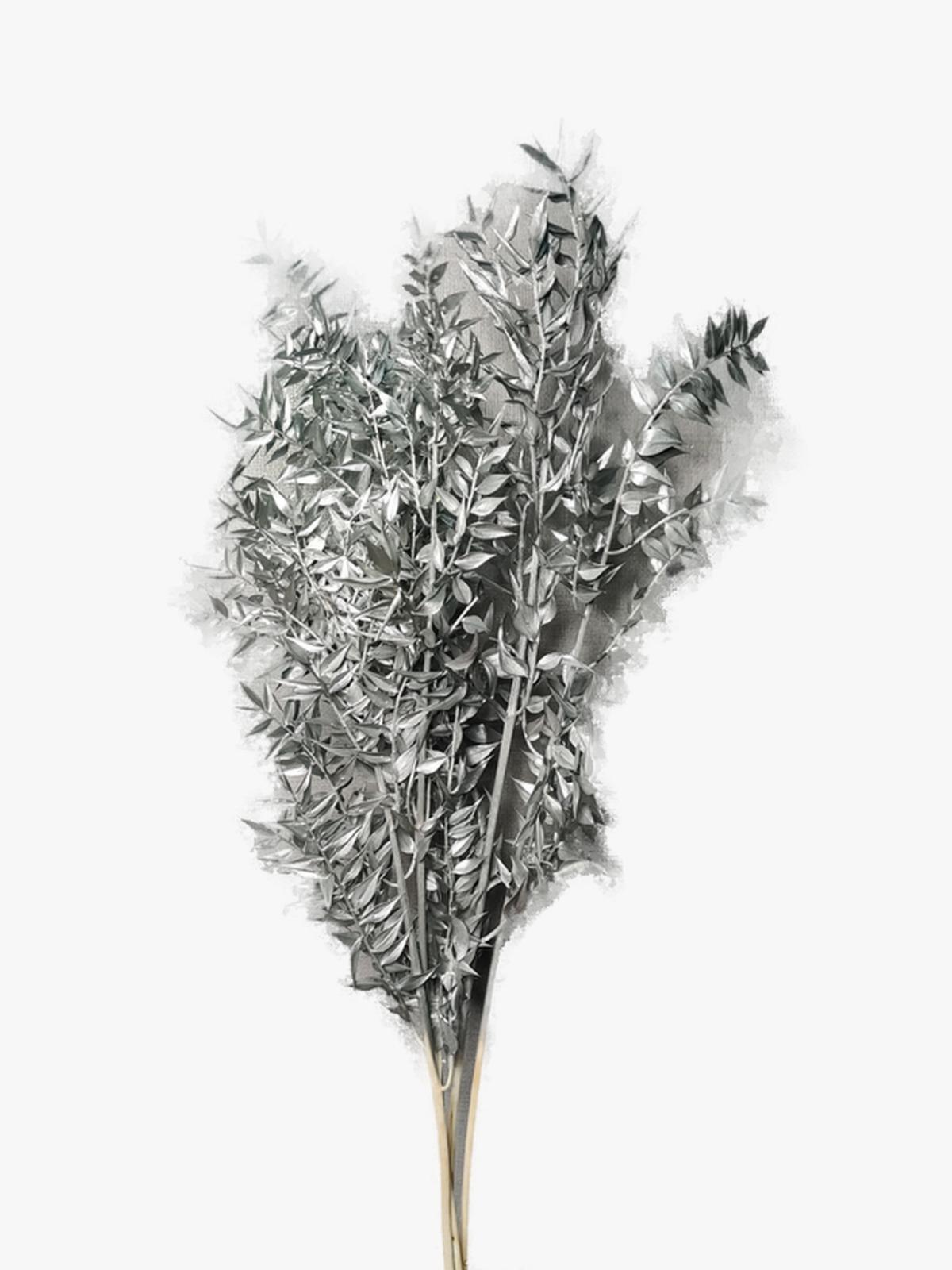 راسكاس - فضي  الزهور بالجملة