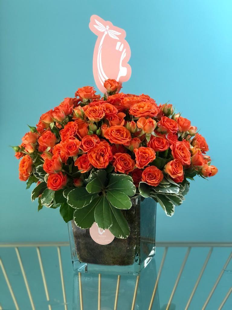 أيمن 'زهور مع قاعدة'