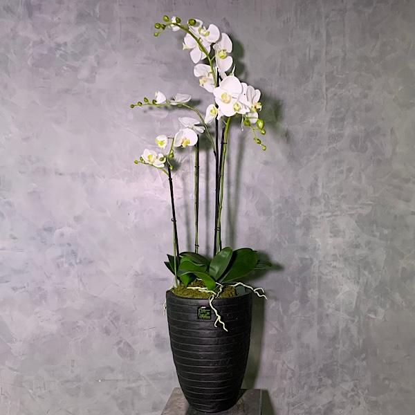 4 Artificial Orchids Premium Collection