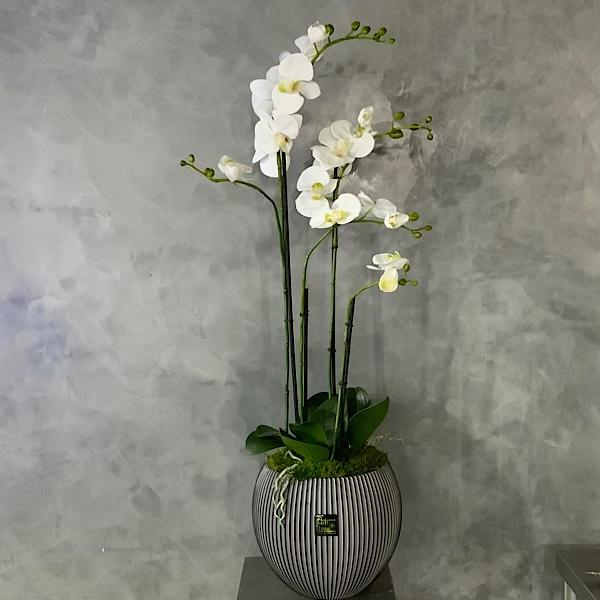 Artificia Orchids Artificial Plants