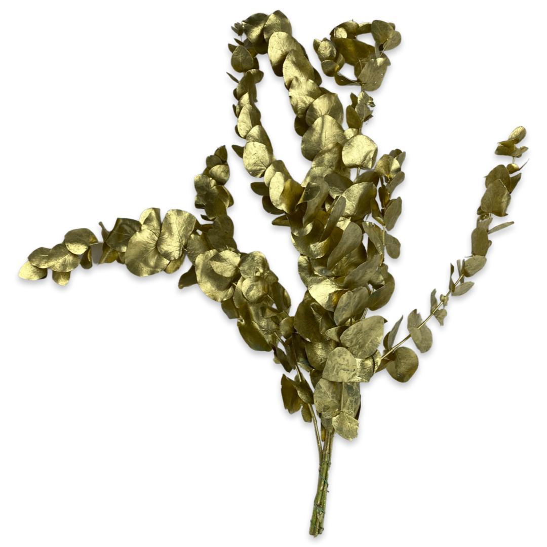 Dyed Eucalyptus - Gold 'Wholesale Flowers'