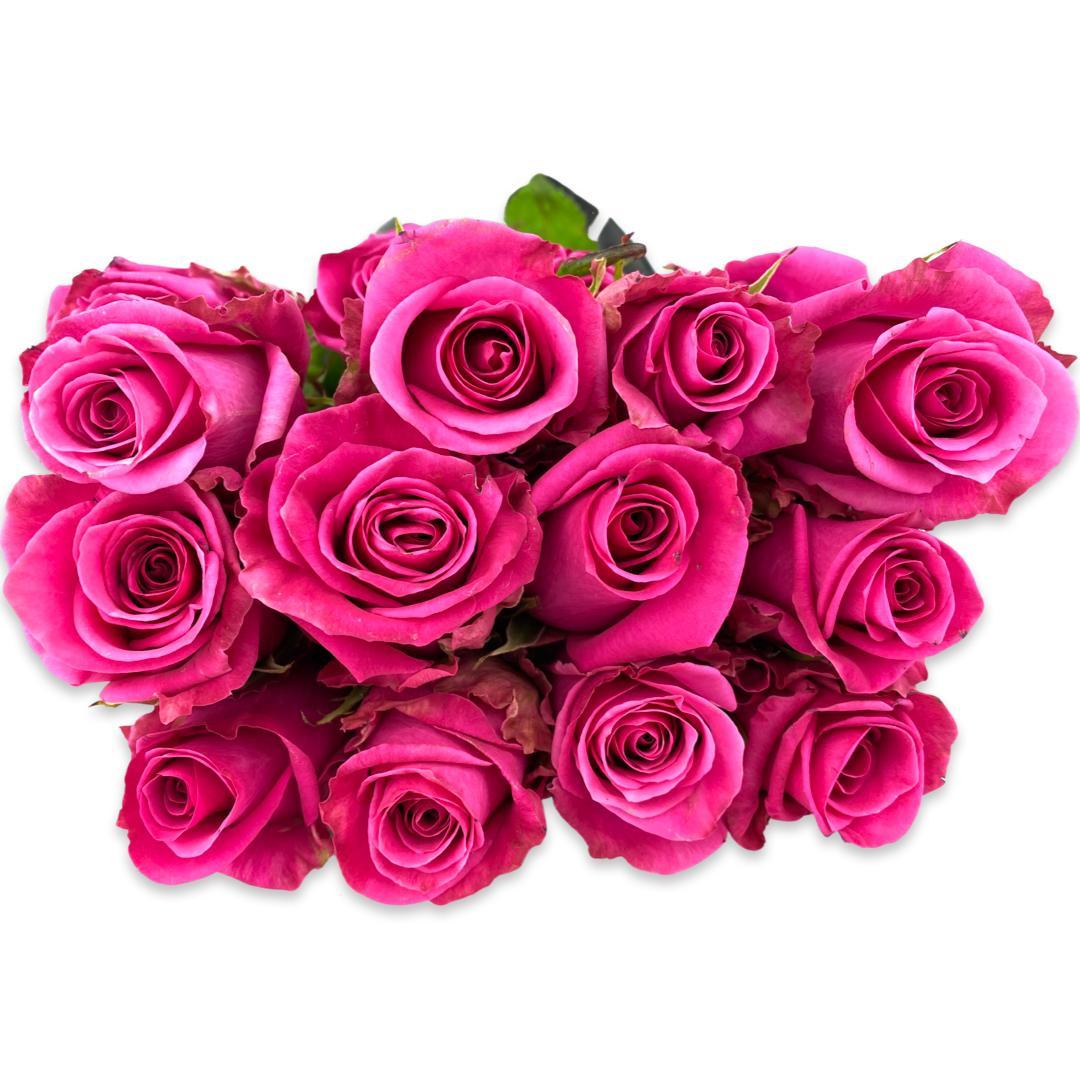 زهور (زهري فاقع)  الزهور بالجملة